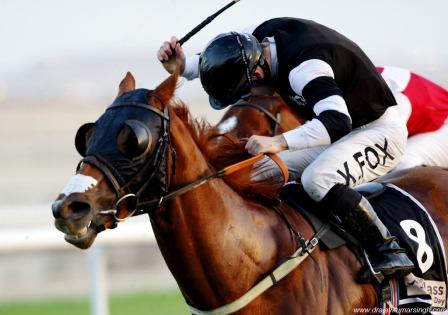 NASS horse racing